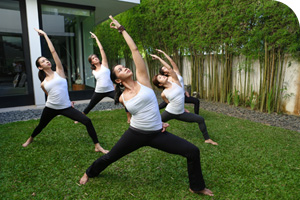 Yoga Teaching and Sequencing Intensive
