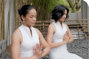 100H Meditation Teacher Training Intensive